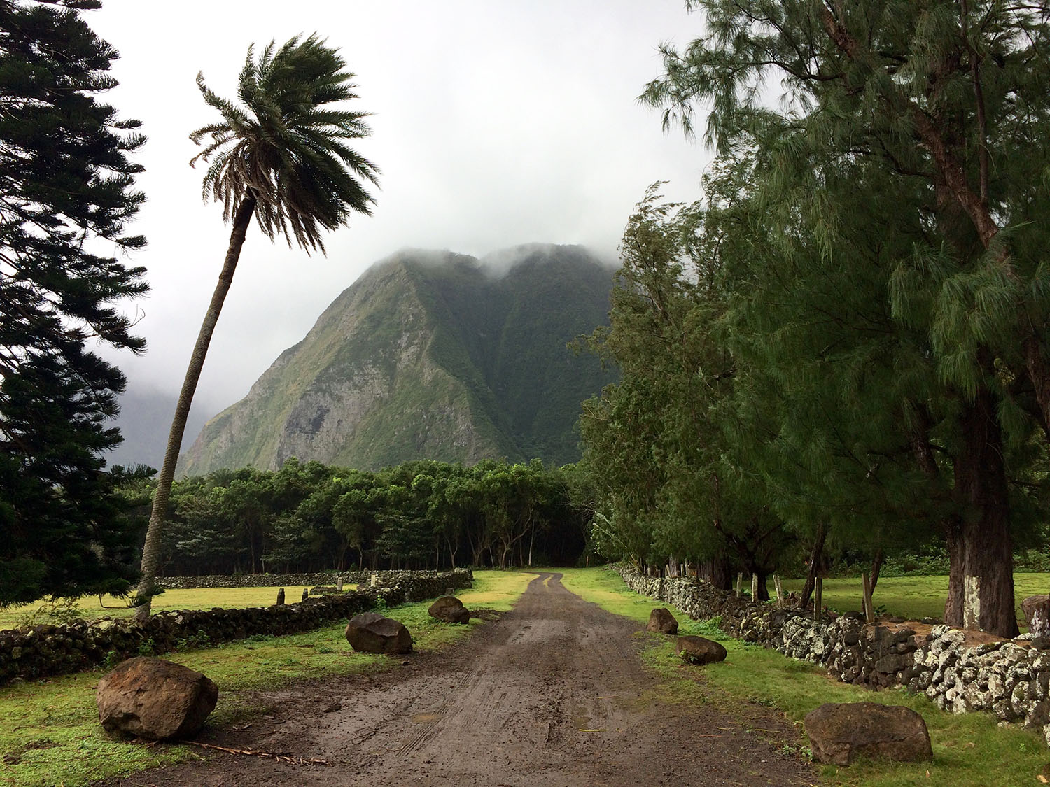 Road in Kalaupapa