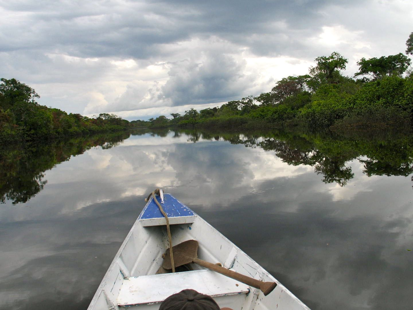 The Amazon River Adventure